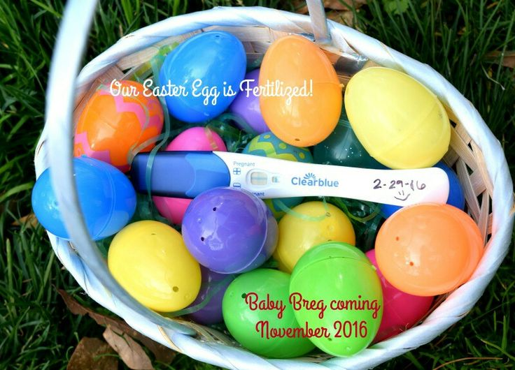 6 easy easter pregnancy announcements ideas easter pregnancy announcement ideas and inspiration egg hunt negle Images