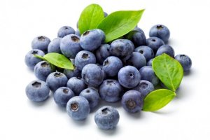 blueberries are a healthy food for babies under 1 year