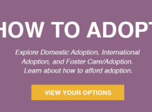 ways to adopt your baby