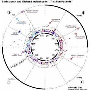 This data visualization maps the statistical relationship between birth month and disease incidence in the electronic records of 1.7 million New York City patients. (Credit: Dr. Nick Tatonetti/Columbia University Medical Center)