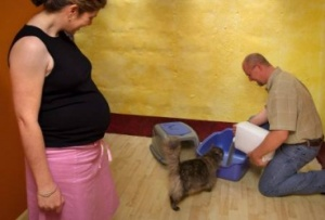 http://www.newkidscenter.com/Cat-Litter-During-Pregnancy.html
