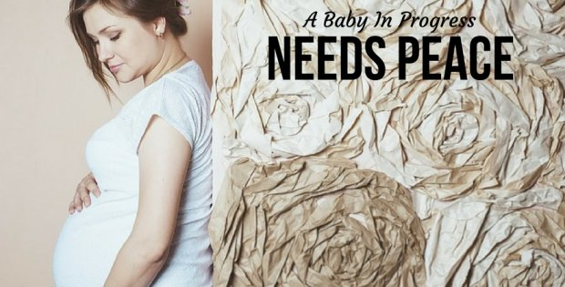 A Baby In Progress Needs Peace