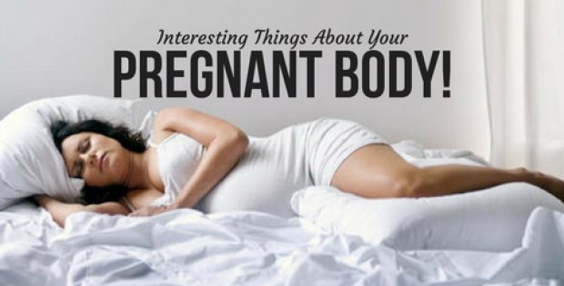 Interesting Things About Your Pregnant Body!