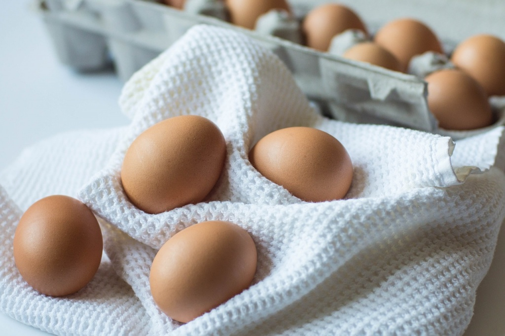 eat eggs during pregnancy for brain development