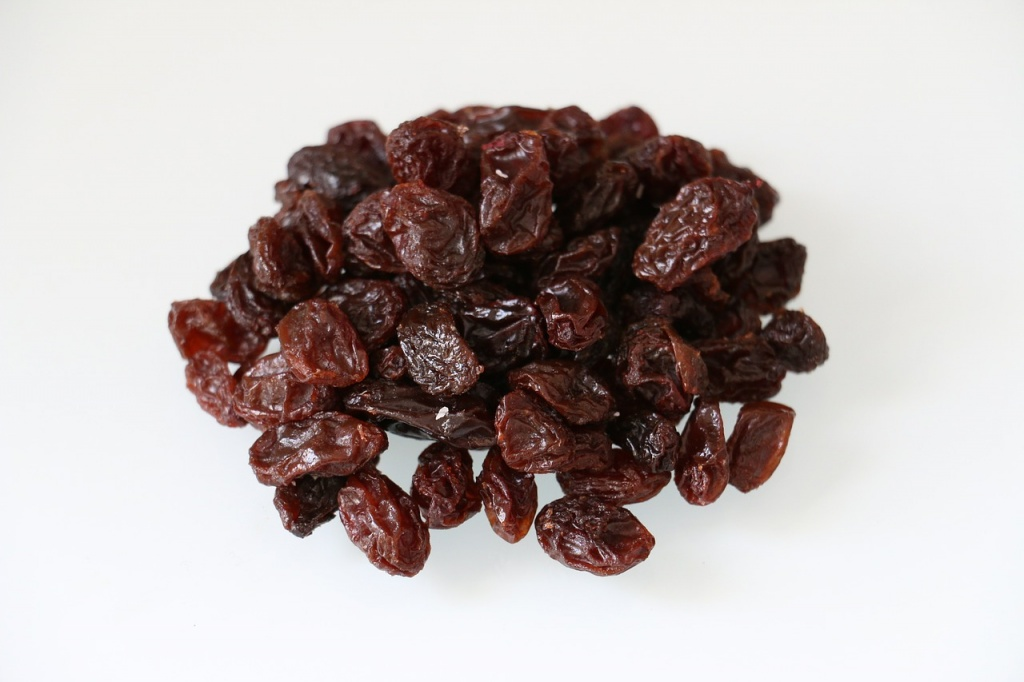 eat raisins during pregnancy for brain development