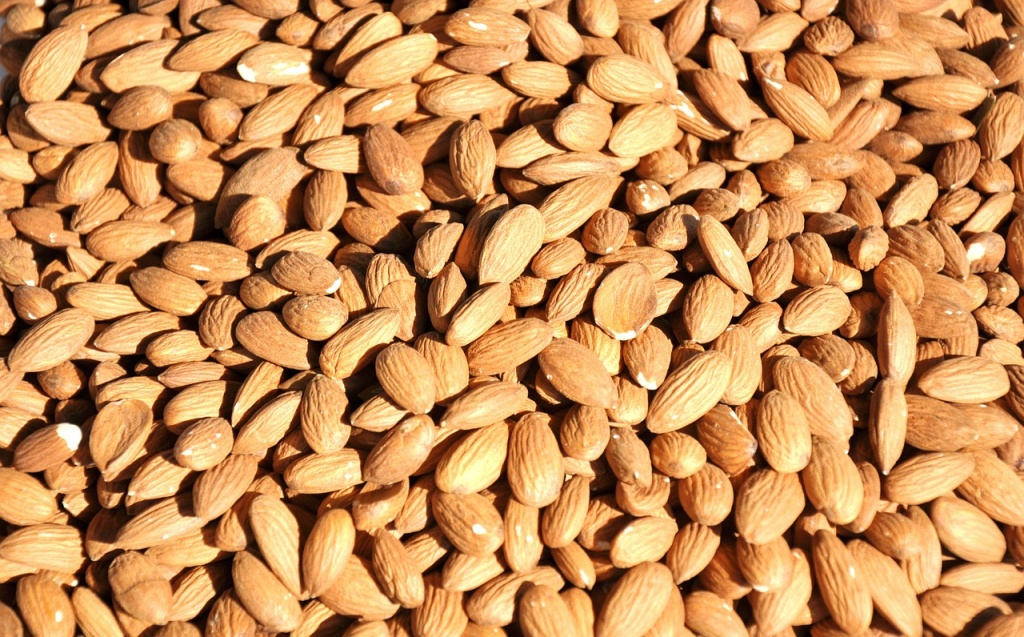 almonds are foods to eat during pregnancy for healthy fetal brain development